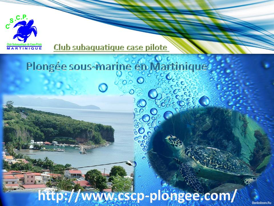 Club subaquatique case pilote